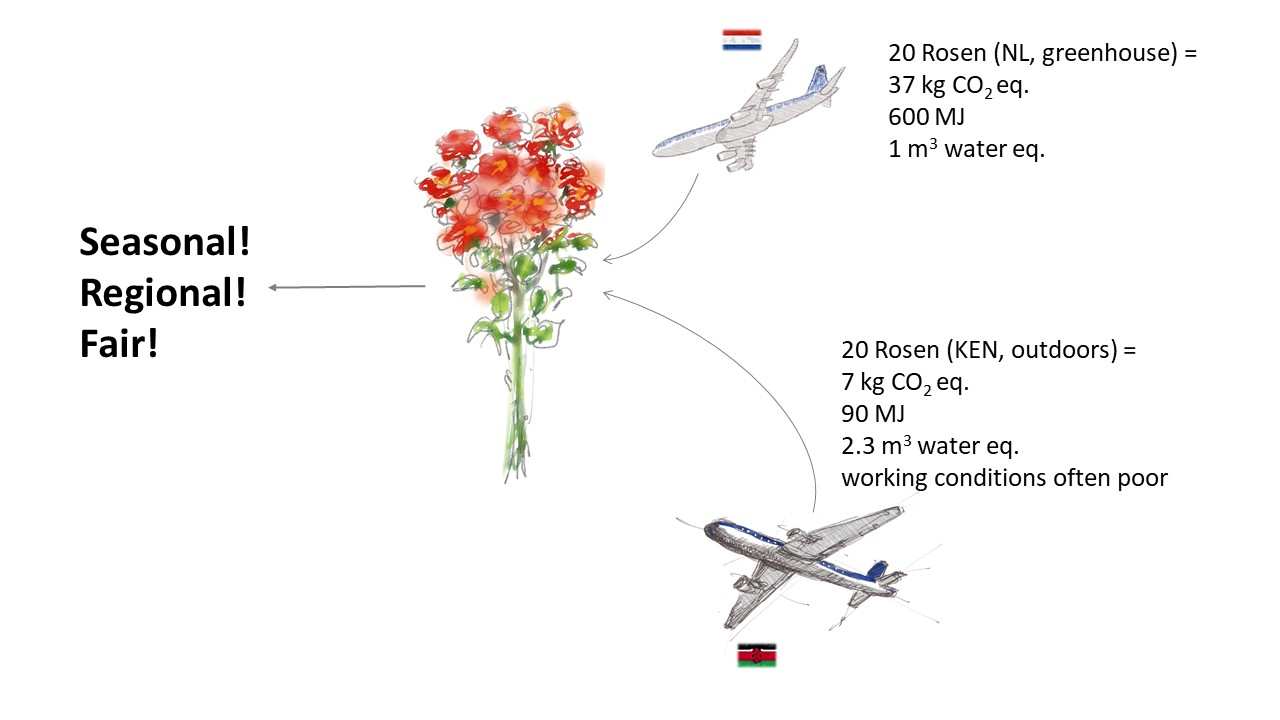Comparison of the environmental impact of 20 imported roses. They generate 37 kg of CO2 equivalents from the Netherlands, require 600 megajoules of energy and 1 cubic meter of water equivalents. In comparison, they produce only 7 kg of CO2 equivalents from Kenya and require 90 megajoules of energy because they are in the open, and not like those from the Netherlands in the greenhouse. For this, the Kenyan roses need 2.3 cubic meters of water equivalents and are often grown under poor working conditions. When buying flowers: seasonal, regional and fair!